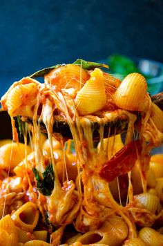 Stove top Creamy Caprese Pasta loaded with tomato and cheese flavors. No cream is used in this recipe. Creaminess is coming from milk and lots of cheese. This will become your family's favorite pasta dish!   giverecipe.com