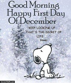 Snoopy - Keep looking up - Love of Life Quotes The Words, Positive Quotes For Life, Life Quotes, Relationship Quotes, Positive Morning Quotes, Morning Mantra, 2015 Quotes, Pain Quotes, Strength Quotes