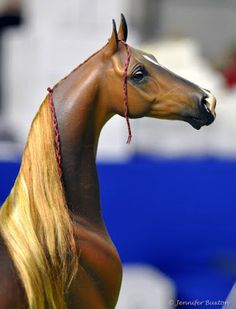 Headstudy of one of the most well-known horses in the world of model horsedom.  This is the saddlebred Boom, a custom model created by SARAH MINKIEWICZ-BREUNIG from a Breyer Halla.