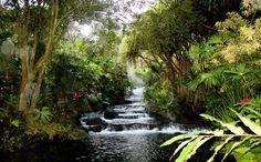 Volcanic Hot Springs, Costa Rica