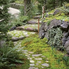 Fieldstone path with flair: A fieldstone path made of small local stones winds through a shady moss garden decorated with ivy, ferns, and spring- flowering bulbs. Fieldstones have a more rustic look than flagstones, with rougher surfaces and more variation in shape and color.