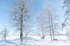 Kangasala, Finland #Finland Finland, Sweden, Europe, Pictures, Outdoor, Photos, Outdoors, Outdoor Games, Outdoor Living