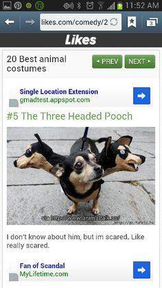 Three Headed Dog Costume