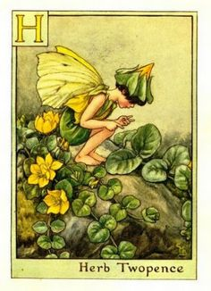 Herb Twopence Flower Fairy » Flower Fairy Prints- Vintage Fairy Prints by Cicely Mary Barker for sale