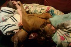 The Short Life of a Wonderful Dog
