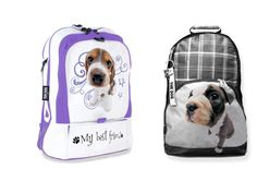 Artlist Collection THE DOG — Back packs