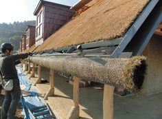 「芝ロール」を軒先に設置。屋根の窓側面の手曲げ銅板もワークショップで製作した。「従業員がワークショップに参加すると、建物を大事にするだけではなく、できるまでの物語をお客さんに伝えられるようになる」と小西氏(写真:アキムラ フライング・シー)緑茂る丘のような建物、自然との格闘で実現|日経BP社 ケンプラッツ