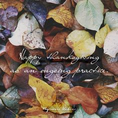 Happy thanksgiving as an ongoing practice.  —Byron Katie