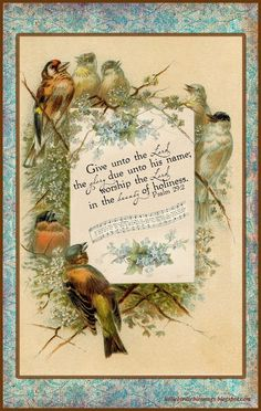 Little Birdie Blessings : Scripture Thursday ~ The Beauty of Holiness