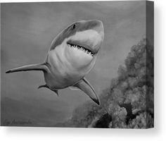 Shark Metal Print featuring the drawing Reef Shark by Faye Anastasopoulou Shark Drawing, Reef Shark, Ocean Scenes, Thing 1, Great Pictures, Stretched Canvas Prints, Artist At Work, Fine Art America, Original Art