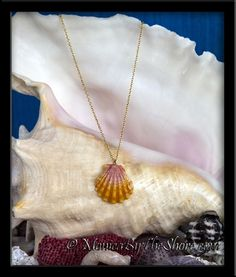 Classic Hawaiian Sunrise Shell Swarovski Crystal Gold Necklace ~ Beautiful Hawaiian Sunrise Shell in deep classic colors of pink and gold, embellished with a sparkling Swarovski crystal! Draped on a 17 inch 14K filled curb chain, the pendant shell measures 1 1/8 inches. The shell is full in shape with ruffled ribs and perfect wings. A treasure of a seashell necklace, so much Aloha! Hand made in Hawaii rare Sunrise Shell jewelry from the North Shore, Haleiwa, Oahu, Hawaii…