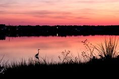 Rosy Dawn on the Bass River Photo by Judith Keneman — National Geographic Your Shot