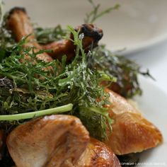 A Zuni Cafe Classic: The Roasted Chicken | Focus:Snap:Eat