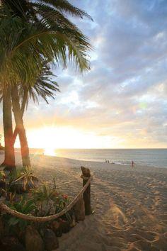 beach, beach, beach...