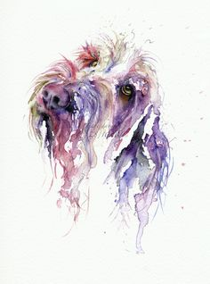 Spinone quirky and colourful pet portrait style Watercolour by artist Jane Davies. Available as an LIMITED EDITION PRINT. Watercolor Art Diy, Watercolor Artists, Watercolor Animals, Watercolor Techniques, Watercolor Portraits, Watercolor Paintings, Watercolours, Watercolor Splatter, Art Clipart