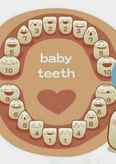 http://minimeloveit.blogspot.sg/2013/12/Baby-Teething-Sequence.html Baby Teething Singapore Mums/Moms