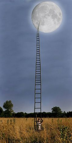 Picture Prompts for Writing! Tell me about who made this ladder and why he/she wants to go to the moon? Photo Writing Prompts, Writing Photos, Writing Prompts For Kids, Narrative Writing, Story Prompts, Teaching Writing, Writing Prompt Pictures, Teaching Strategies, Inference Pictures