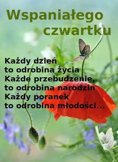 Good Morning, Blog, Google, Kitchen, Good Morning Funny, Polish, Buen Dia, Cooking, Bonjour