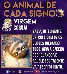 Read Animal De Cada Signo from the story Signos by Sexytaekookv (𝙶𝙰𝚃𝙸𝙽𝙷𝙰) with reads. Virgo Horoscope, Pisces, Tarot, Zodiac Signs, Cancer, Memes, Animals, Wattpad, Asmr