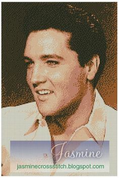 elvis presley 8 dmc colors free pattern. Be my friend on Facebook to get the pattern. Leave your address in my wall.