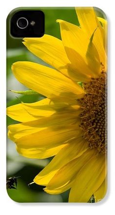 Currently in second place on pixel.com iPhone case contest! Vote for yourself!!