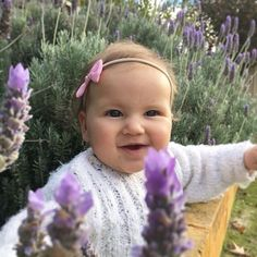 our gorgeous little rep doing what she does best  looking adorable in our bow headband and eating flowers  Thanks to @texcole for the beautiful photo   Little D just before she ate most of a lavender flower looking so cute in her @roseanddotco headband. Thank you so much for such a gorgeous little softie its the first headband that stays put but doesnt cut in! #autumnsun #roseanddotco #radcointhewild #babyheadbands #eattheflowers