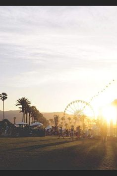 Coachella music festival 2013. Meghan, me and you are gonna go to one of these.