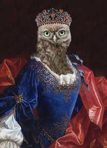 Lady Aves Countess of Strigidae