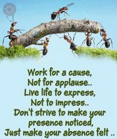 Work for a cause, not for applause. Live life to express, not to impress. Don't strive to make your presence noticed, just make your absence felt. Good Morning Friends Quotes, Morning Qoutes, Good Morning Image Quotes, Good Morning Beautiful Quotes, Morning Thoughts, Good Morning Inspirational Quotes, Morning Greetings Quotes, Good Morning Messages, Good Morning Good Night