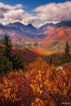 An autumn view from Mt. Hopkins in the Adirondack State Park, NY. by Adam Baker