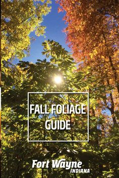 It's no secret that the Midwest is one of the best destinations to see fall leaves. Fort Wayne Indiana, Amazing Destinations, Autumn Leaves, Outdoor Adventures, Park, Nature, Beautiful, Naturaleza, Fall Leaves