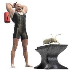 How to Kill Termites: 7 Best Ways to Kill Termites Yourself