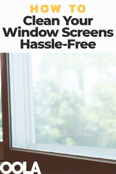 Best 25 Clean Window Screens Ideas On Pinterest Window