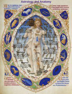 Homosignorum: Anatomía Zodiacal