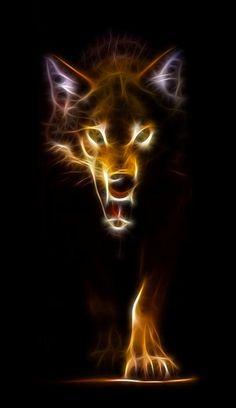 Wolf Ready To Attack - udun, el lobo, brillaba en la oscuridad. tenia un extraño fulgor