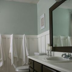 Sherwin Williams Sea Salt- This is the color I used for both my kitchen and bathroom.  I love it.