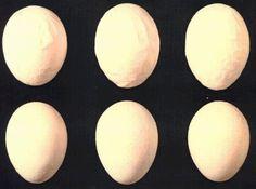 Sex vita ägg med skrovliga eller deformerade skal.