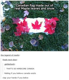 "20 Canada Day Memes In Honor Of America's Hat - Funny memes that ""GET IT"" and want you to too. Get the latest funniest memes and keep up what is going on in the meme-o-sphere. Tumblr Stuff, Funny Tumblr Posts, My Tumblr, Canadian Memes, Canadian Things, Stupid Funny, Funny Jokes, Funny Stuff, Random Stuff"