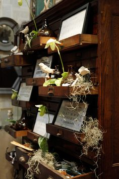 Twos-Company-Book-Room: Drawer display idea
