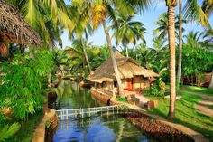 Kerala which is also known as Keralam is the state of India. Kerala is a water world of India because surrounding area of Kerala is covered with water and coconut trees. Kerala is the highest growing state of India and its 52% area covered with water and...