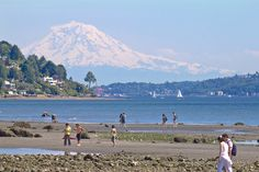 Discovery Park Seattle   Seattle, Mount Rainier, Discovery Park, people exploring low tide ...