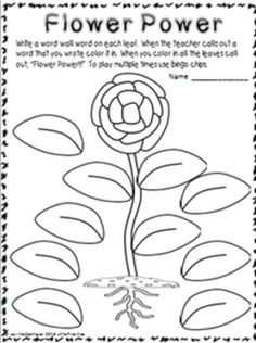 Parts Of A Plant Worksheet For First Grade Printable