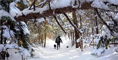 On Snowshoes in New Hampshire, Shuffling Off to Lonesome Lake