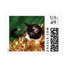 Tuxedo kitten Christmas Postage