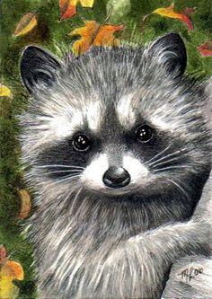 Fall Raccoon Art by Melody Lea Lamb ACEO Print by MelodyLeaLamb