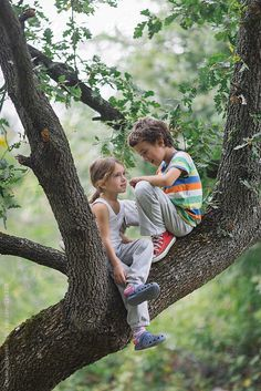 Little girl and a boy climbed on tree playing and talking together Boy Best Friend Pictures, Boy And Girl Best Friends, Little Boy And Girl, Bff Pictures, Children Photography Poses, Girl Photography, Painting Digital, Boy And Girl Drawing, Boy And Girl Friendship