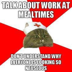 Nursing Student Cat