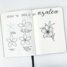 How to draw beautiful flower doodles in your bullet journal! These easy flower drawing tutorials will have you doodling flower patterns all over your bujo. Easy Flower Drawings, Flower Drawing Tutorials, Easy Drawings, Drawing Flowers, Painting Flowers, Pretty Flower Drawing, Easy To Draw Flowers, Floral Drawing, Diy Painting
