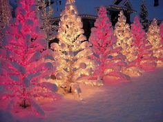 pink and yellow. White Christmas Lights, Holiday Lights, Little Christmas, Outdoor Christmas, All Things Christmas, Winter Christmas, Christmas Trees, Merry Christmas, Xmas Lights