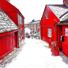 Little street Damstredet, in beautiful red and white🇳🇴 Oslo winter. Who would you visit with? Photo by Oslo Winter, Red Houses, Wooden Houses, Visit Philippines, Norway Fjords, Norway Travel, Euro Travel, Visit Norway, Winter Wonder